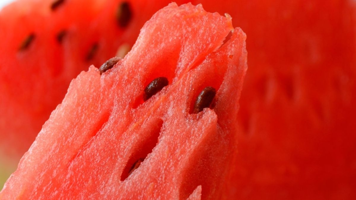 Andalucía alcanza un récord en las exportaciones de frutas y hortalizas en plena pandemia.
