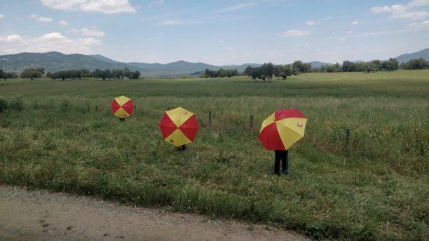 Paraguas de España con los que se concentrarán el sábado.
