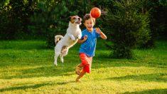 Conoce los mejores juguetes para que los niños jueguen al aire libre