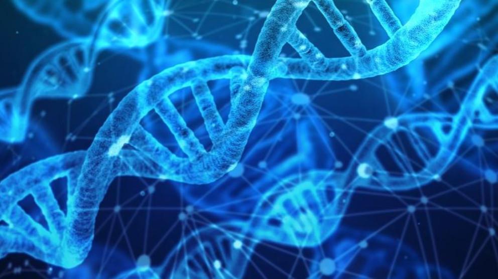 5 enfermedades raras que seguro desconocías