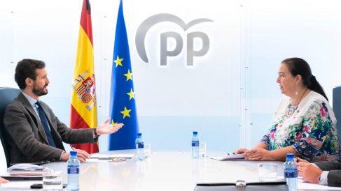 El presidente del PP, Pablo Casado, se reúne con la presidenta de la AVT, Maite Araluce, en la sede del PP. En Madrid, a 29 de mayo de 2020 – (DAVID MUDARRA-PP)