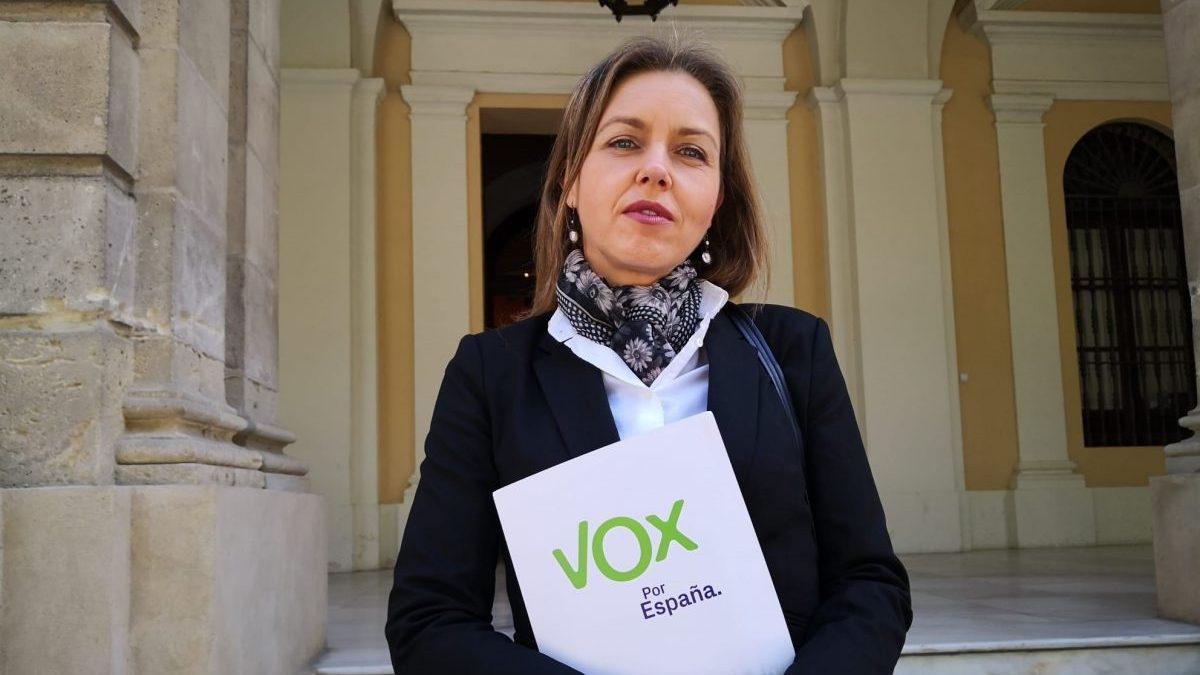 Sevilla.-Coronavirus.-Vox pide concentrar recursos públicos en sectores desfavorecidos y eliminar gastos superfluos