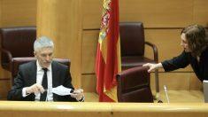 El ministro de Interior, Fernando Grande-Marlaska, en su comparecencia en el Senado – Marta Fernández Jara – (Europa Press)