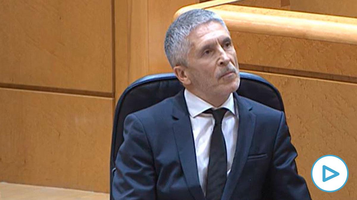 Fernando Grande-Marlaska en el Senado