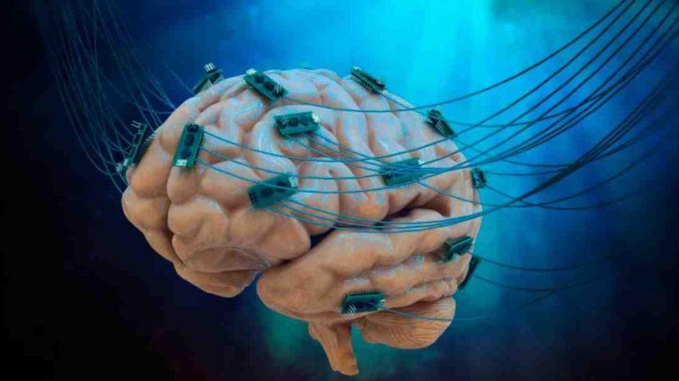 Riesgos de tener bacterias en el cerebro