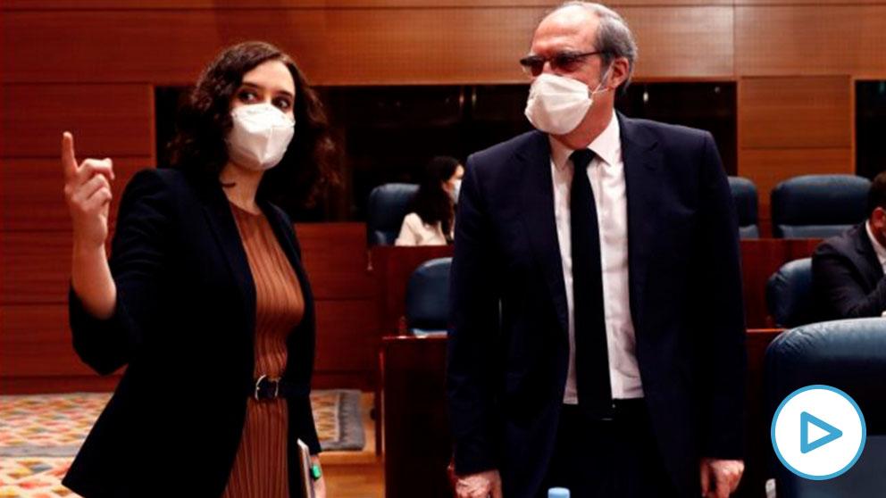 Isabel Díaz Ayuso y Ángel Gabilondo este jueves en la Asamblea de Madrid. (Foto: EP)
