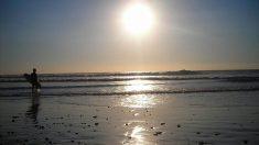 La Junta de Andalucía lanza la convocatoria de empleo en el plan Playa Seguras de Cádiz