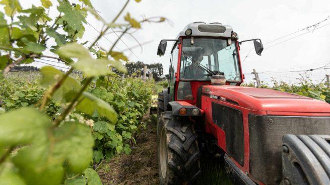 Los agricultores avisan del golpe que sufrirán las zonas rurales por las reformas energéticas de Sánchez