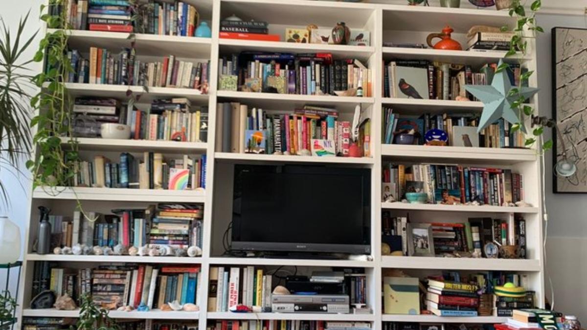 Twitter: El reto de encontrar el gato en la estantería se vuelve viral