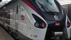 Trenes de SNCF, la Renfe francesa