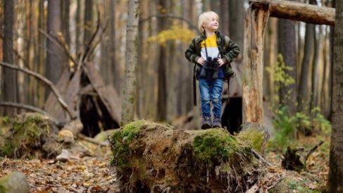 Los pasos para poder hacer una búsqueda del tesoro en la naturaleza