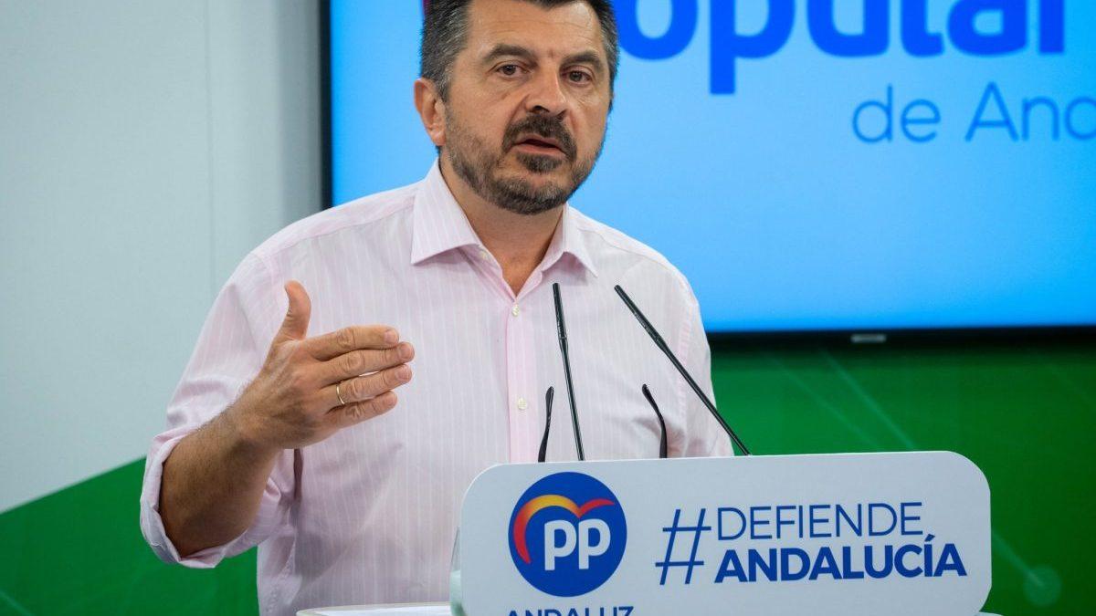 PP-A valora que «por primera vez» en Andalucía se hace «un plan de empleo con total transparencia gracias a Moreno»