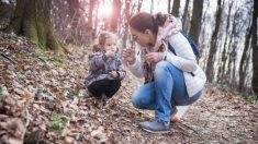 Distintos juegos Montessori para desarrollar el sentido del olfato de los niños