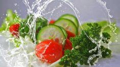 Manipulación de alimentos, hábitos correctos