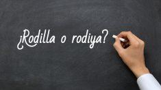 Se escribe rodilla o rodiya