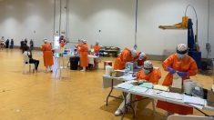 Las pruebas PCR realizadas hoy en la empresa hortofrutícola del Bajo Cinc. Foto: EP