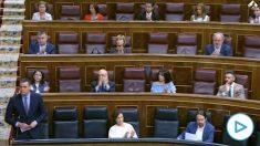 Pablo Iglesias no aplaude a Pedro Sánchez en el Congreso tras ensalzar el presidente la figura de Felipe González.