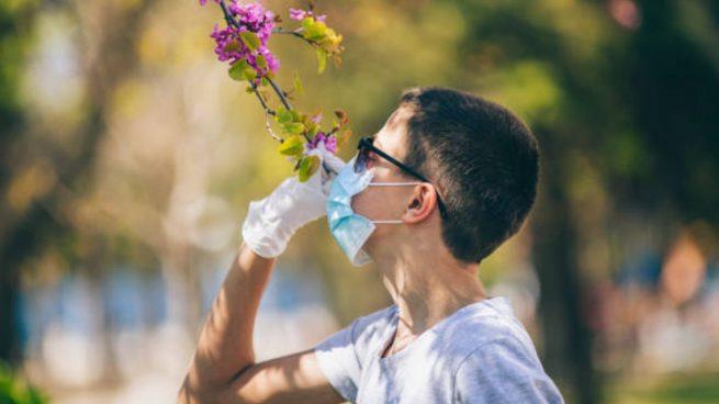 coronavirus perdida olfato