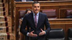 Pedro Sánchez, en el Congreso. (Foto: PSOE)
