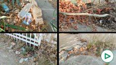 Los vecinos de Triana claman contra el socialista Espadas por la suciedad del barrio.