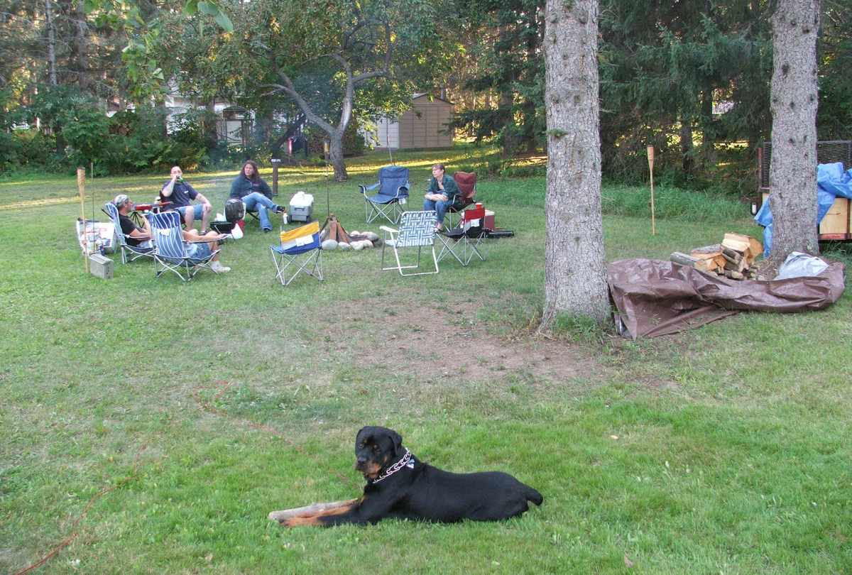 Una acampada con tu mascota
