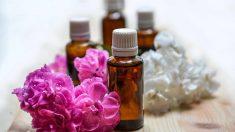 3 aceites esenciales contra la sinusitis