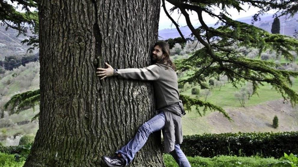 Beneficios de los árboles en la salud en Día Internacional