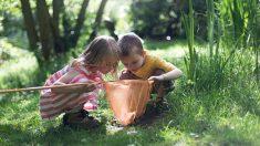 Los mejores juegos que los niños pueden jugar al aire libre