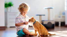 Consejos para preparar a los niños ante la llegada de una mascota