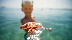 Los motivos para que los niños vayan a la playa