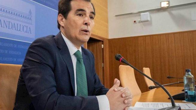 El portavoz parlamentario del PP-A cree que Serrano, baja de Vox, debe dejar el acta