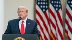 Donald Trump propuesto por segunda vez para el premio Nobel de la Paz