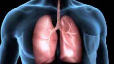 Tips contra la inflamación pulmonar
