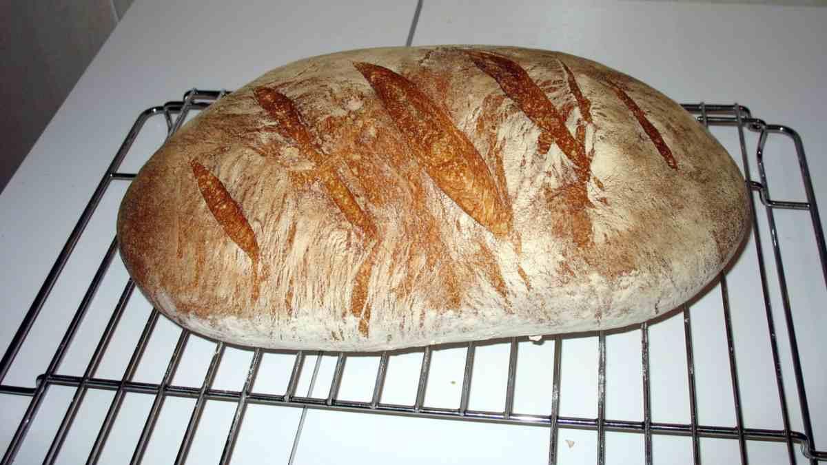 2 recetas de pan proteico