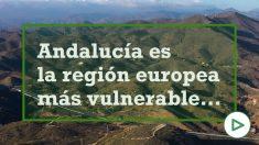 Vídeo: Junta de Andalucía