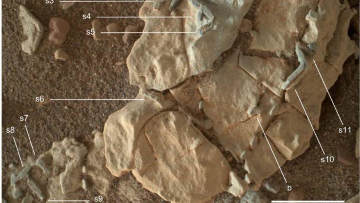 ¿Son estos rastros de vida en Marte?