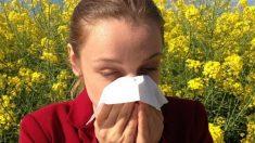 8 de julio: Día Mundial de la Alergia