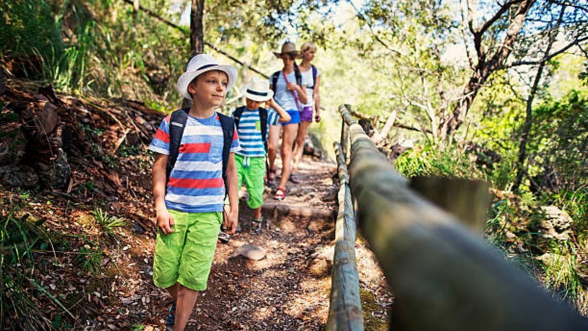 8 motivos para elegir ir con los niños en verano a la montaña