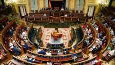 Vista del último Pleno celebrado en el Congreso de los Diputados. (Foto: Congreso)