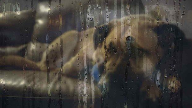 Perro durante la lluvia