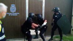 La Policía Nacional en la operación en el Campo de Gibraltar