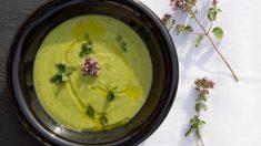 Receta de cena de verano: sopa fría de calabacín con arándanos y menta