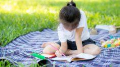 El cuaderno de verano de los niños puede ser sustituído con otras actividades