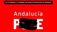 Campaña contra el PSOE de Teresa Rodríguez, que cambia el nombre a los socialistas.