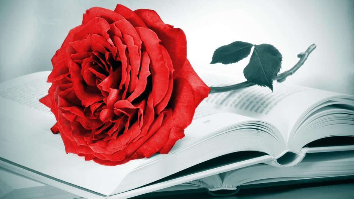 Una rosa roja y un libro son lo más tradicional en Sant Jordi