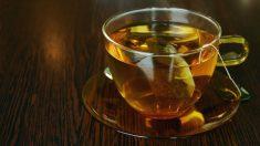 ¿Es bueno tomar té todos los días?