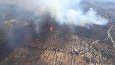El Gobierno de Portugal ha decidido decretar el estado de alerta en todo su territorio durante el lunes y el martes debido al desarrollo de incendios.