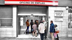 ¿Cumplo los requisitos para pedir la nueva prestación de desempleo para autónomos?