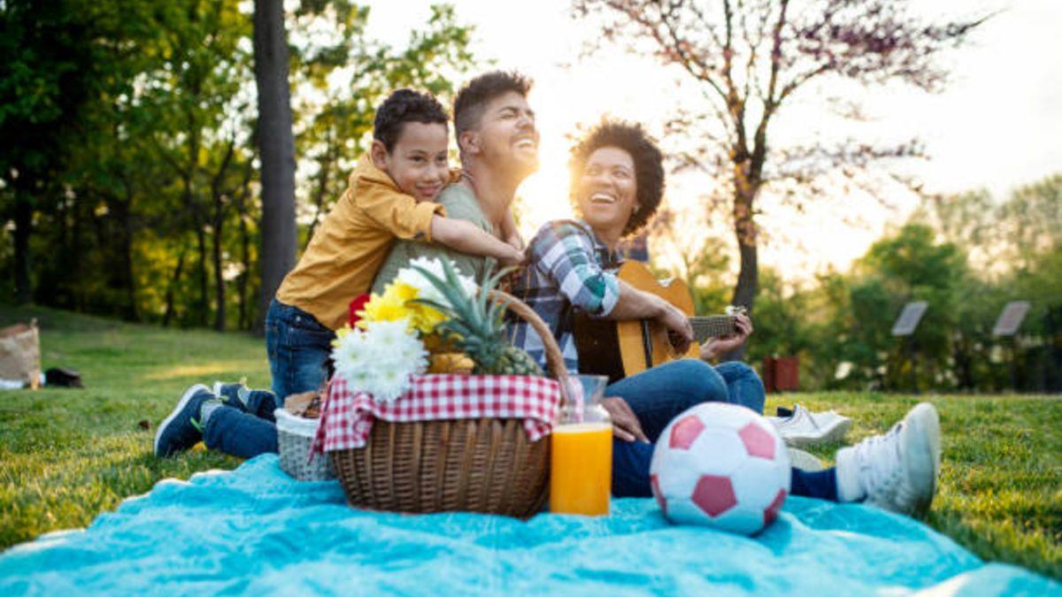 Pasos para organizar un picnic de verano con los niños