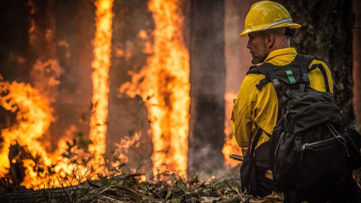 Evacúan varios barrios de Garafía (La Palma) por un incendio forestal